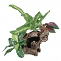 Decor planta acvariu 20 cm 89403